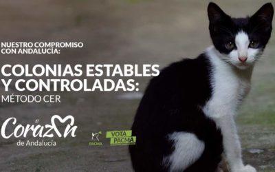 PACMA logra 29.000 euros para las colonias de gatos del Puerto de Santa María y pide al Ayuntamiento que agilice los trámites