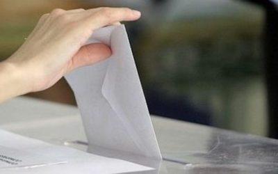 Te contamos qué debes hacer si no encuentras la papeleta de PACMA este domingo en Andalucía