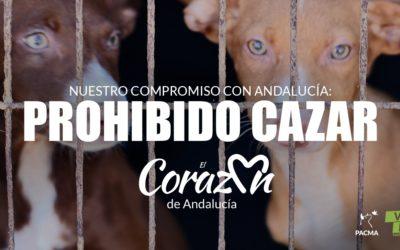 La caza que protegen PSOE y Vox: varios perros y un ciervo caen por un acantilado